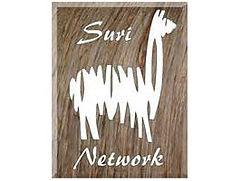 sn_logo_4to3.jpg