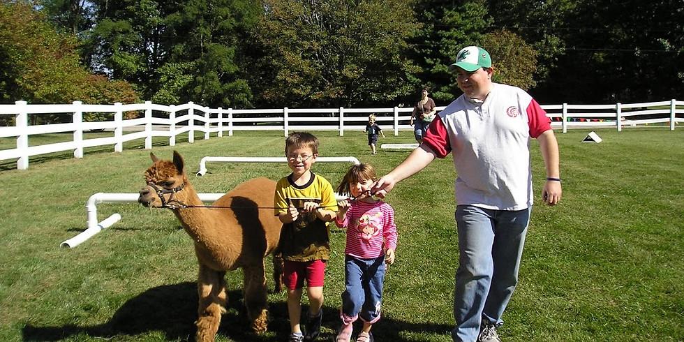 Fall 4 Alpacas Open Farm Day