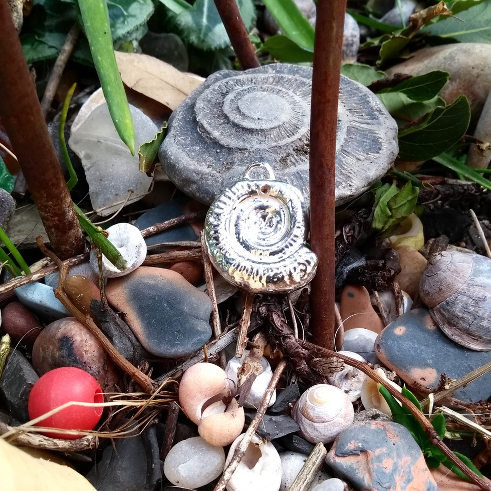 siver ammonite