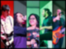 TIM band Pic.png