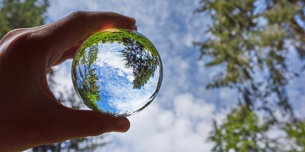 La fiscalité environnementale à l'épreuve des réalités sociales :