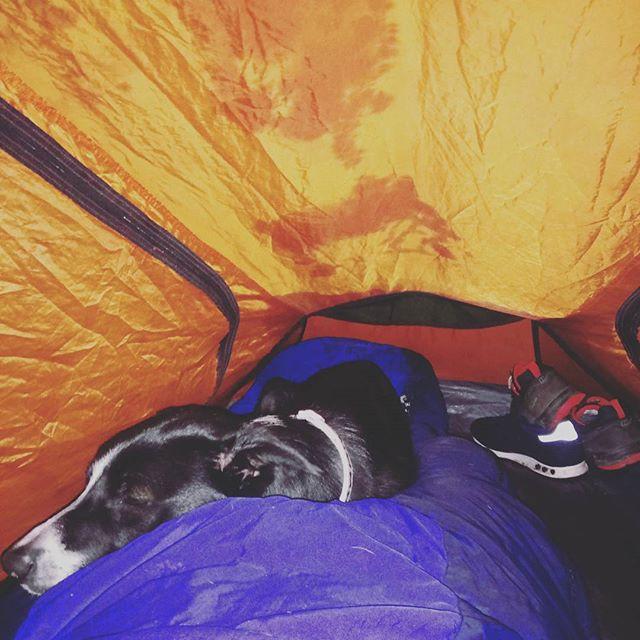 Leg warmer camping in Scotland