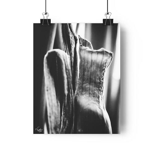 """Picturesque""   Giclée Art Print"