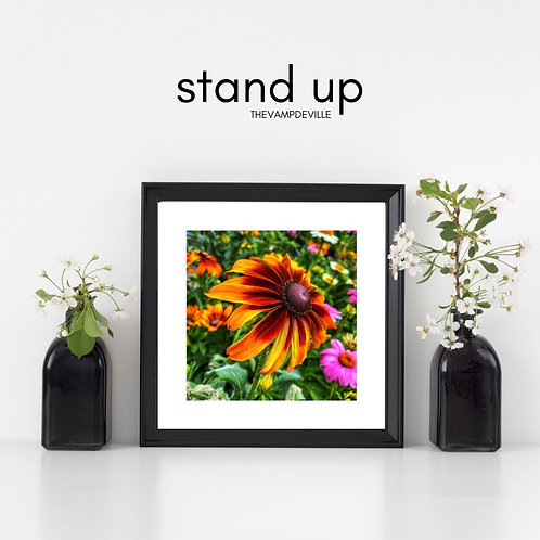 Stand Up   Limited Edition
