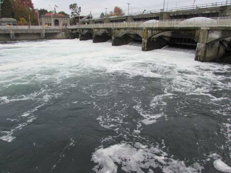 Fish Ladder Viewing Room Ribbon Cutting Ceremony!