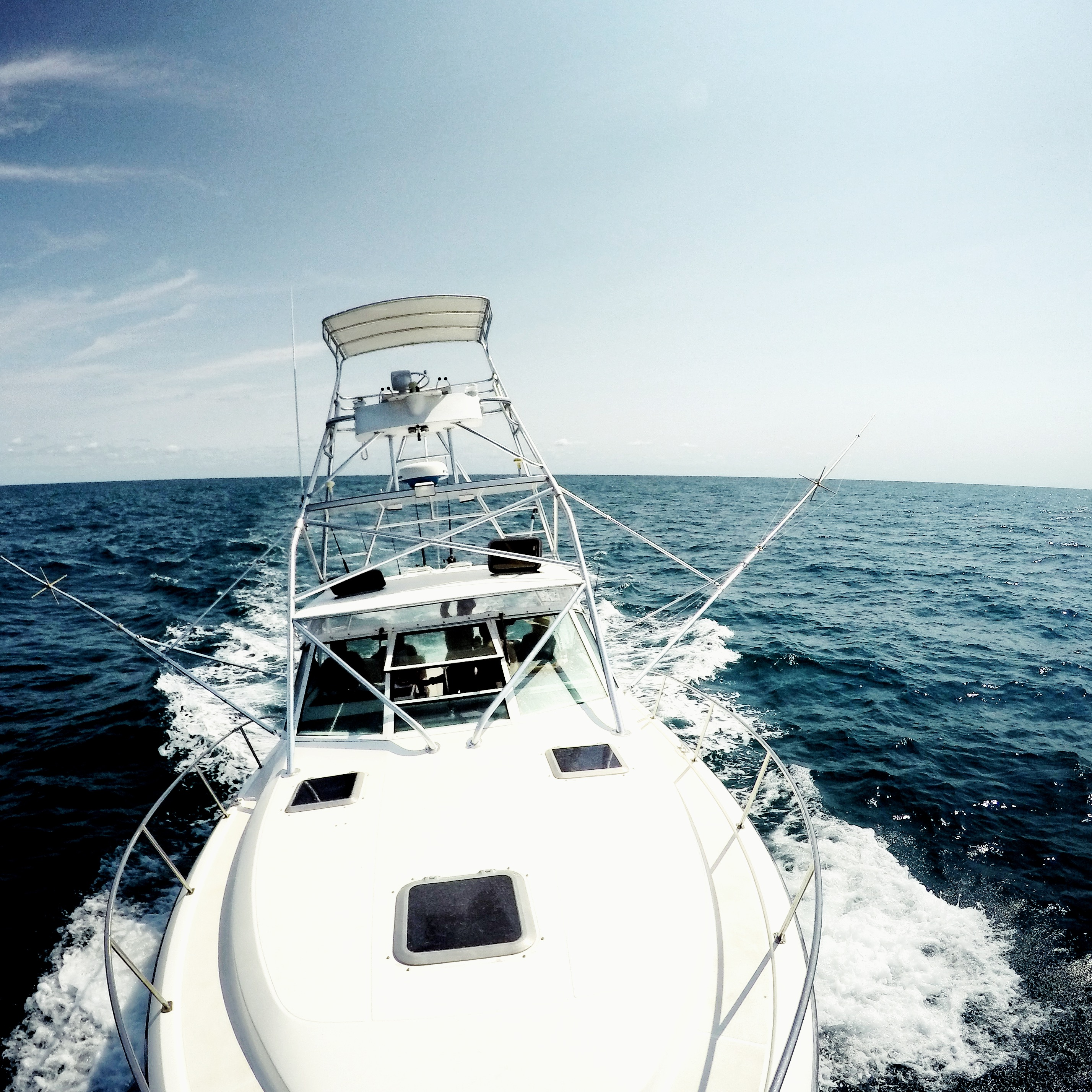 gulf stream offshore fishing