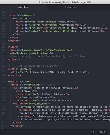 apple_fest_code.png