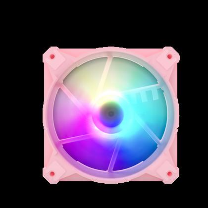CX6 PINK