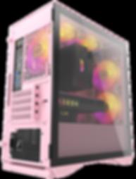 DLM22-pink.303.png