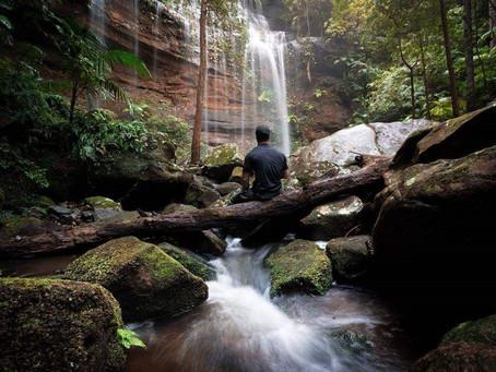 Watagan Park - Nature's Playground