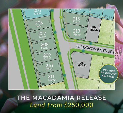macadamia release 2.jpg