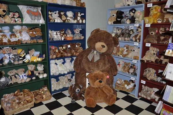 teddy bears downstairs morpeth maitland