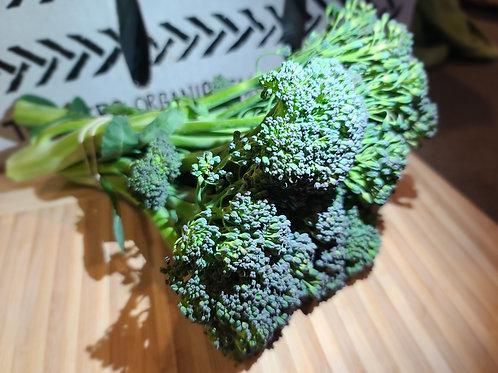 Broccoli by B.U.F.A