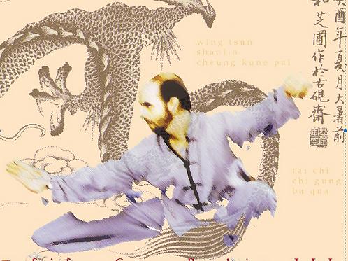 Tai Chi Chuan 48 Posture