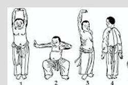 Pa Tua Chin - The 8 Brocades