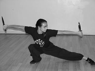 Kungfuwomanwihtdaggers.webp