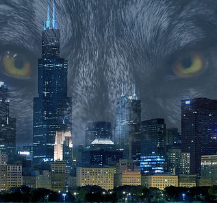 ad Werewolves of Chicago Series Faleena