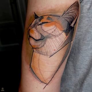 cat_tattoo.jpg