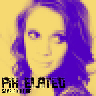 Pix Elated Artwork SK version.jpg