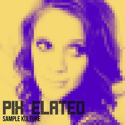 Pix Elated Artwork SK version.jpg
