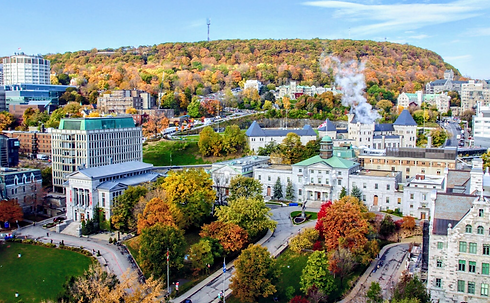 mcgill-aerialview.png