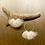 Thumbnail: Tundra hoops