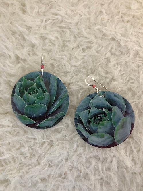 Desert flower earrings