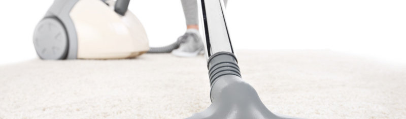 Carpet Cleaning St Petersburg - Free Quote