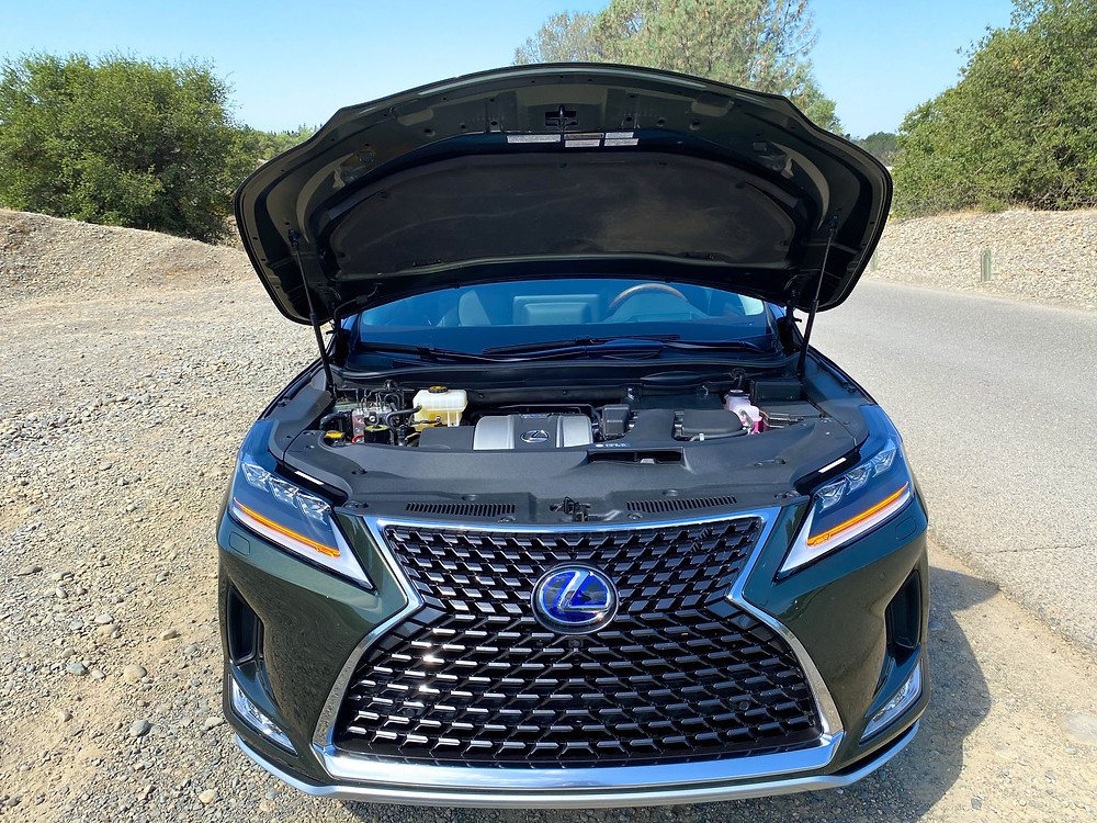 2020 Lexus RX 450hL hood up