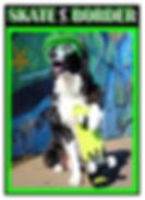 Skate Border 04.jpg
