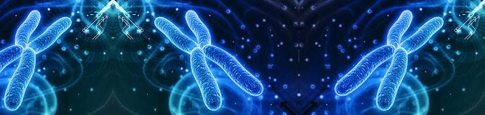 cromosomas.jpg