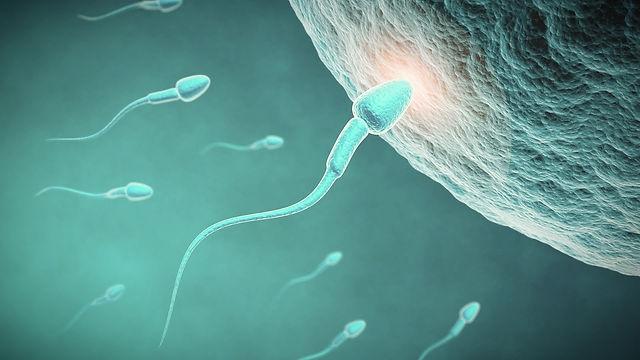 infertilidad_edited.jpg