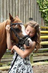 pony-2595144_1920.jpg
