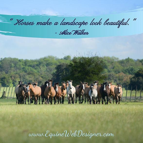 Horses make a landscape look beautiful. - Alice Walker