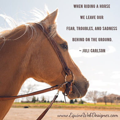 When riding a horse we leave our fear, troubles, and sadness behind on the ground. - Juli Carlson