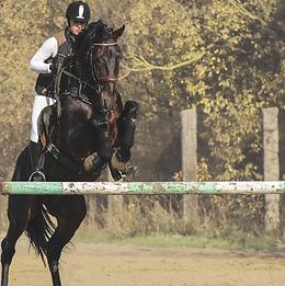 girl-on-horse-3760024_1920.jpg
