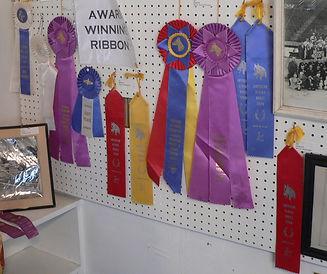 White_Horse_Ranch_Museum_ribbons_1.jpg