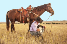 cowboy-1130695_1920.jpg