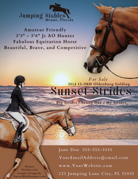 Sale Horse Graphic Sample Flyer