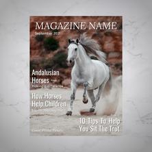 Magazine Cover Sample