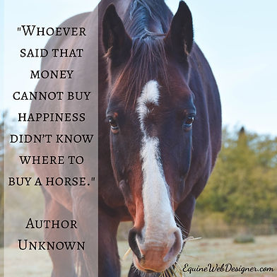 Whoever said that money cannot buy happiness didn't know where to buy a horse. - Unknown