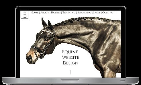 Equine Web Designer.png
