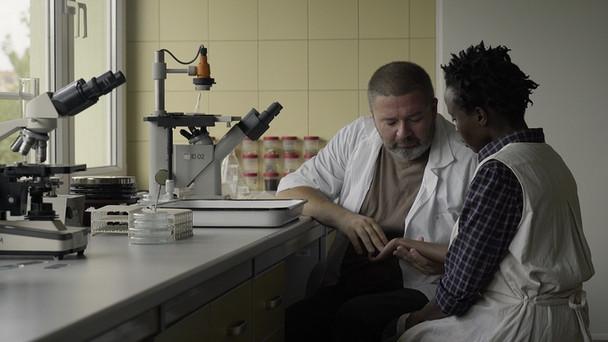 """""""Srebrne Lwy"""" dla filmu """"Ptaki śpiewają w Kigali"""" z udziałem Witolda Wielińskieg"""