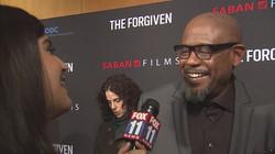 LA_premiere_of__The_Forgiven__Amanda_Sal_0_5046125_ver1.0_640_360