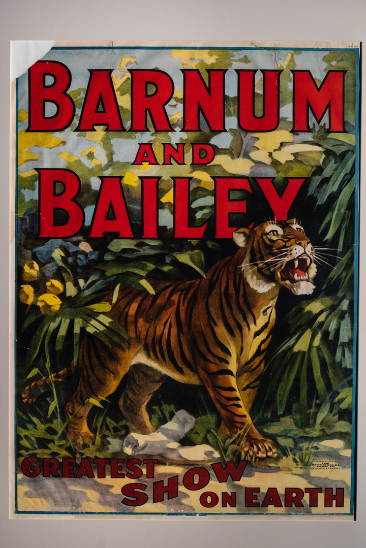 Barnum and Bailey Tiger Poster, 1916
