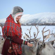 Feeding the reindeer