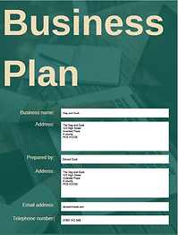 screenshot of business plan front page.p
