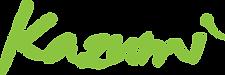 logo - kazumi - 228x76.png