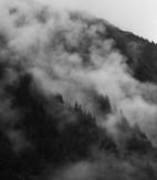 'Juneau' by Jennifer James ( 9 marks )