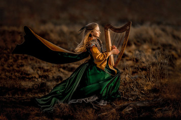 'Celtic Maiden' by Angela Cunning ( 13 marks )